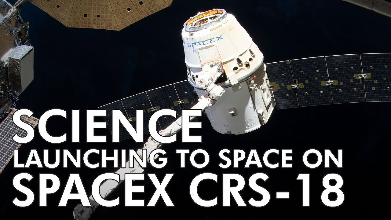 Video poster Highlights of Science Launching on SpaceX CRS 18 - July 8, 2019