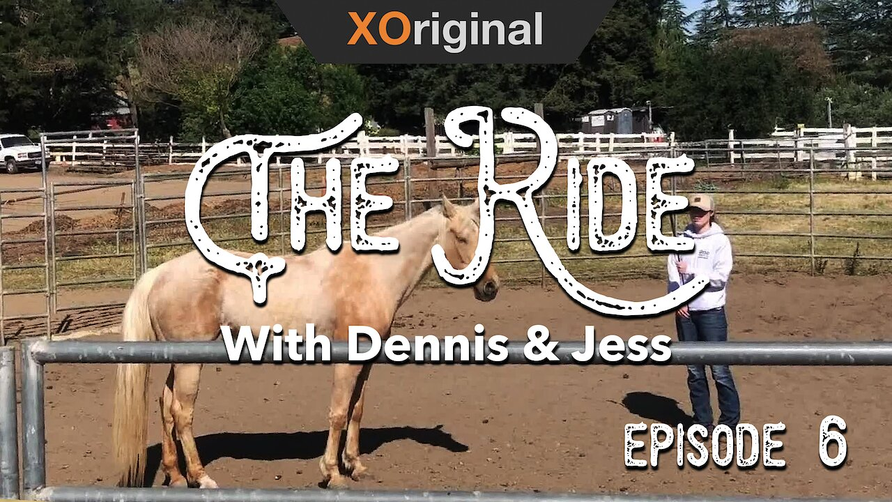 Video poster The Ride - Round and round we go! EP6