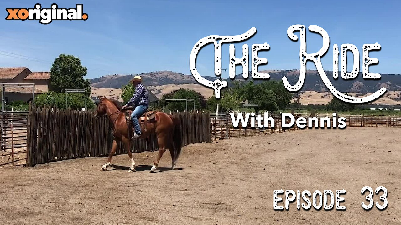 Video poster The Ride - Horses can be sensitive.  EP33