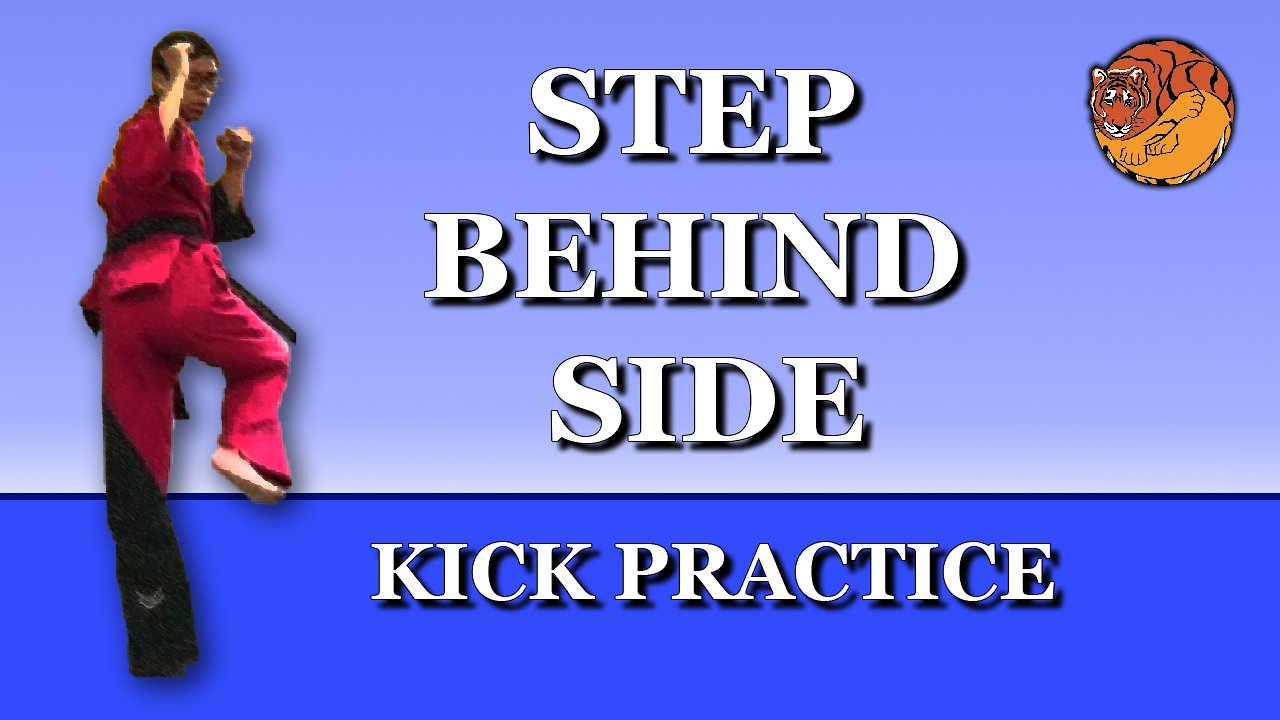 Video poster Kick Practice: Step behind side