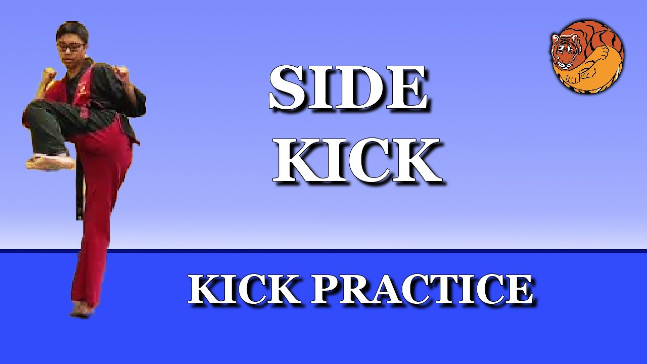 Video poster Kick Practice: side kick