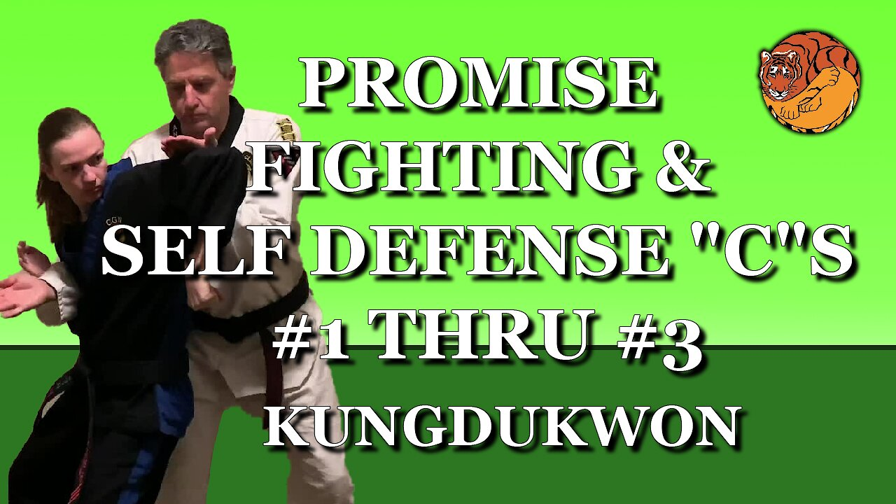 "Video poster Promise Fighting & Self Defense ""C""s #1 thru #3"