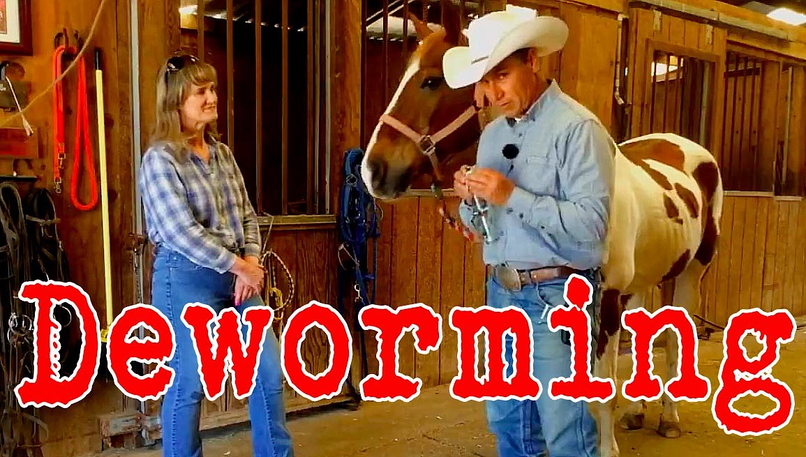Video poster In the barn with Dennis: Dewormer
