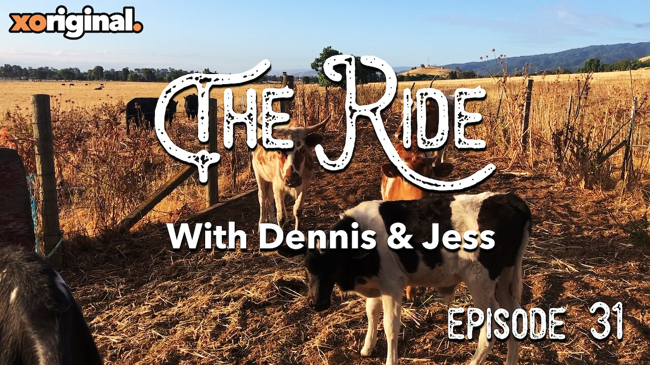 Video poster The Ride - Working On The Ranch EP31