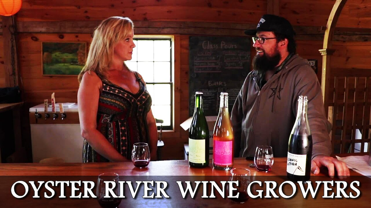 Video poster Vine Time TV Visit Oyster River Wine Growers in Warren, Maine