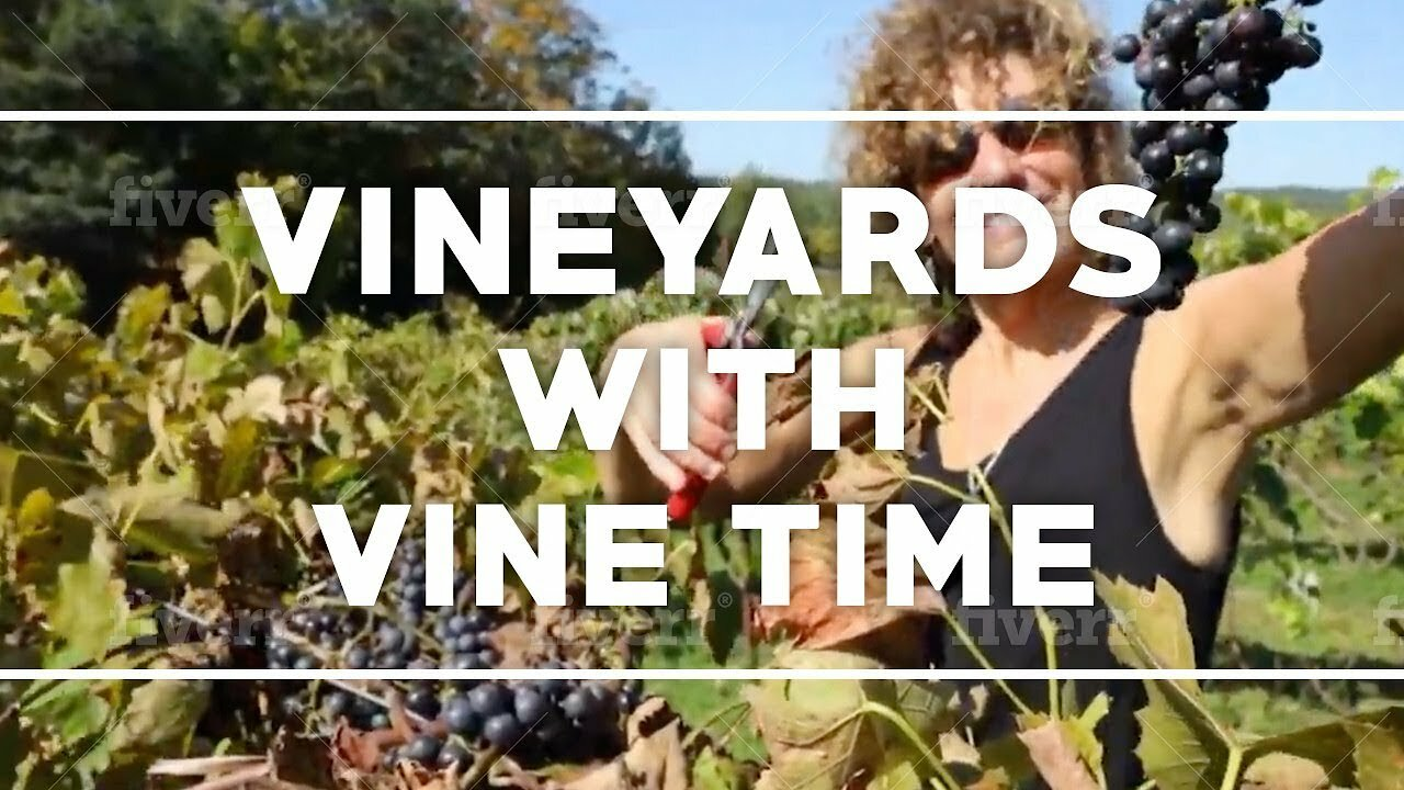 Video poster Vine Time TV visit Maine Coast Vineyards