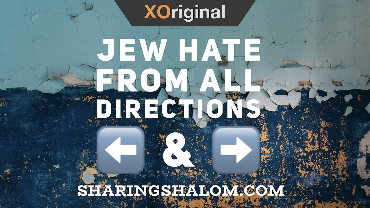 Video poster Jew Hate from All Directions