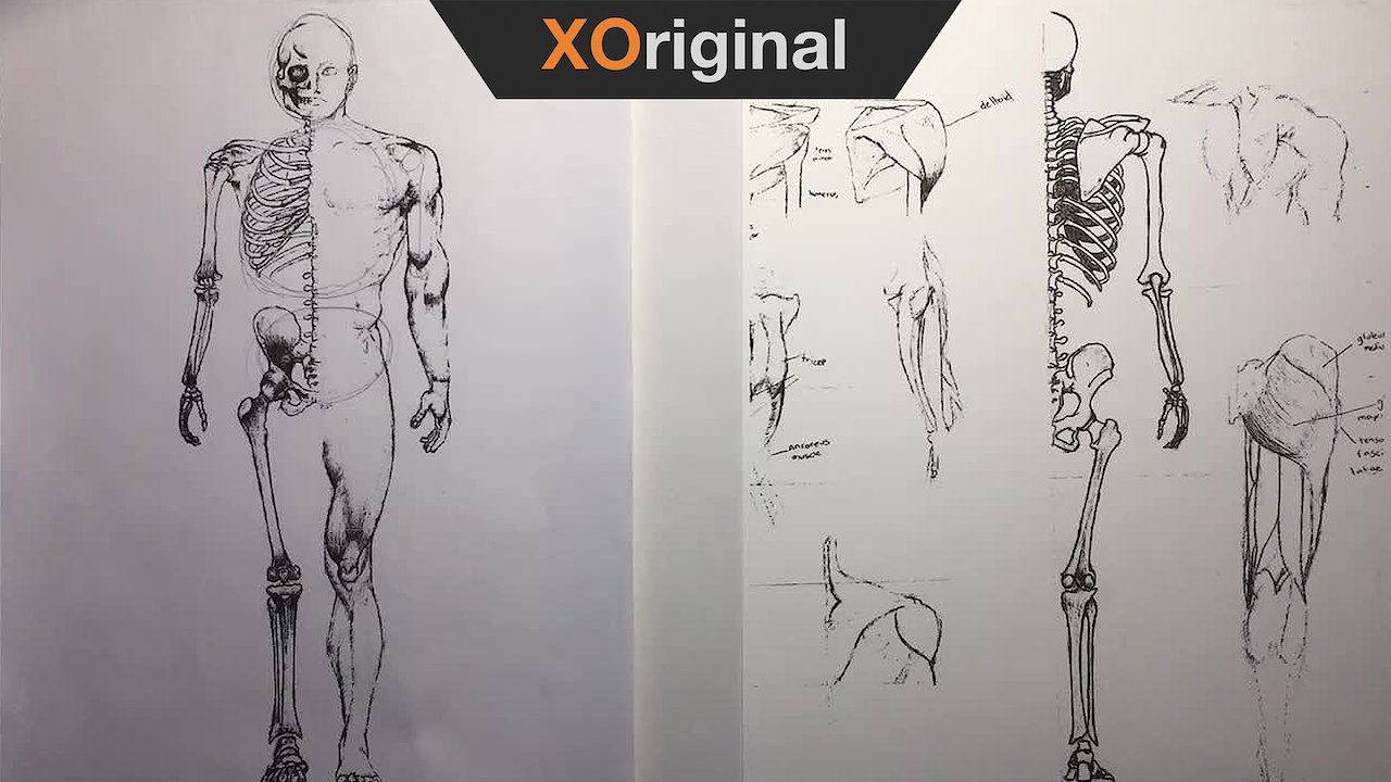 Video poster Human Anatomy: Construction & Proportions