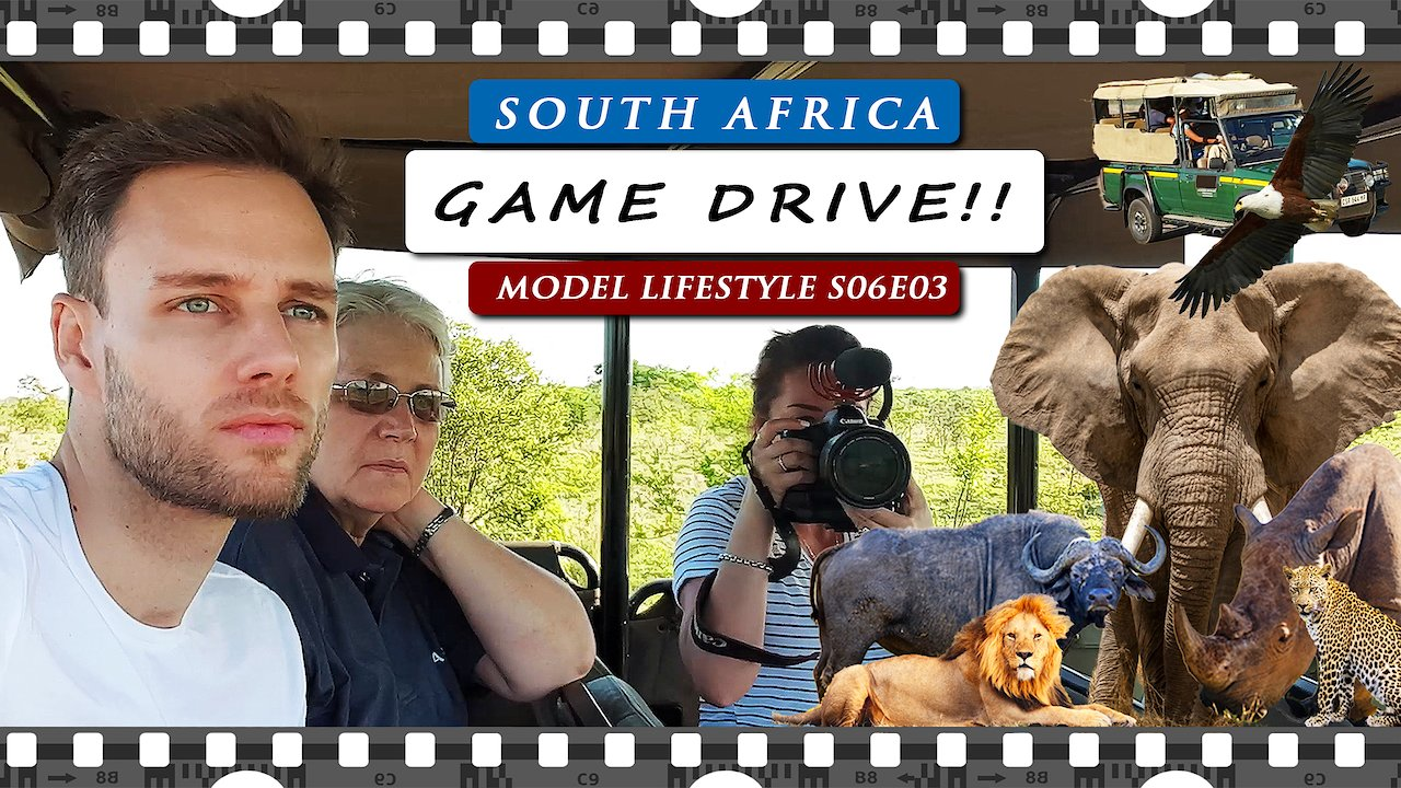 Video poster Kruger National Park GAME DRIVE in SOUTH AFRICA | SAFARI VLOG 2020