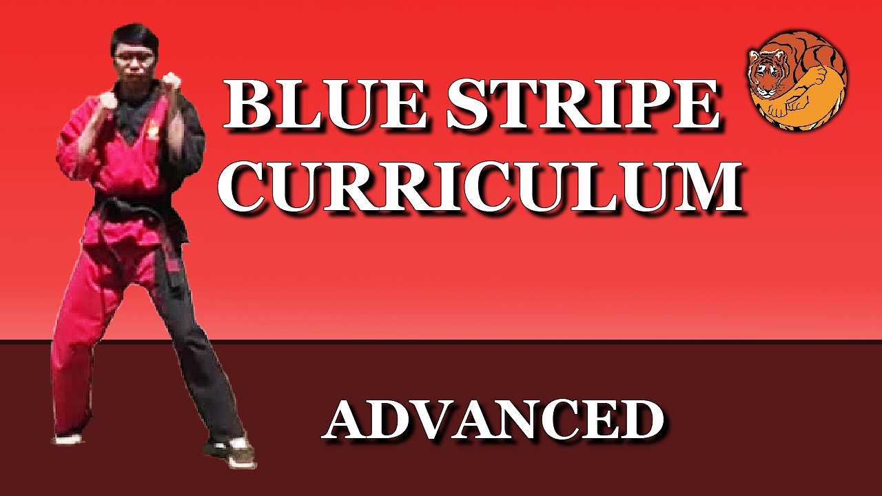 Video poster Blue Stripe Curriculum