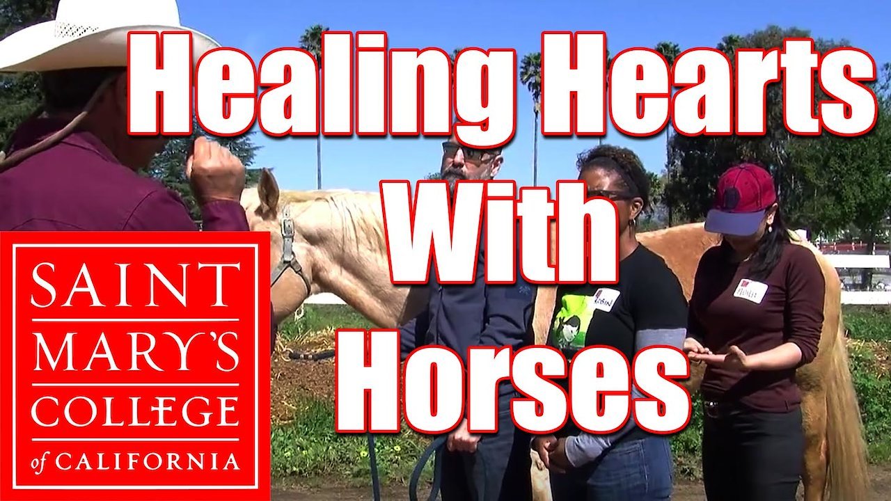 Video poster Saint Mary's College: Healing Hearts With Horses