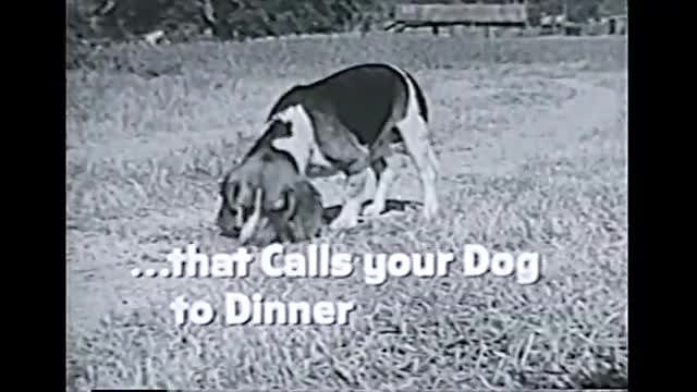 Video poster Commercials: Air Force, RCA, Zenith, Pet Food